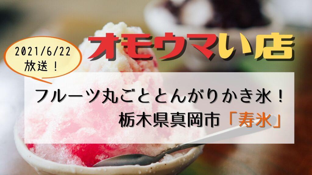 【オモウマい店】栃木県真岡市「寿氷」とんがりかき氷!フルーツ丸しぼり