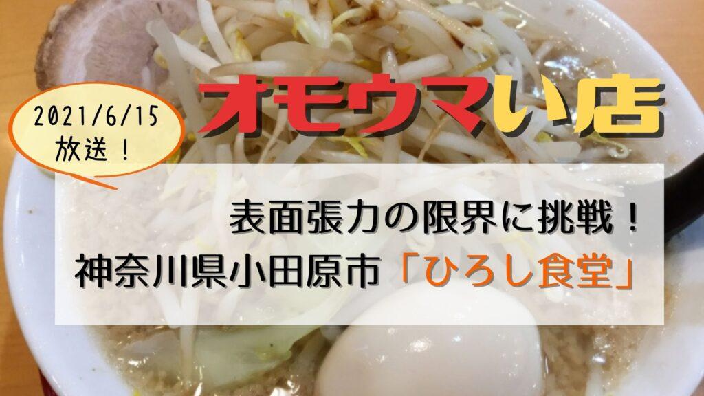 【オモウマい店】神奈川県小田原市「ひろし食堂」こぼれ中華スタミナ麺700円